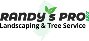 NJ Tree Service, Landscaping and Design Build