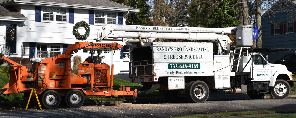 Randy's Pro Tree Service serving  Central NJ, NJ, ready to begin a job.